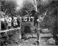 0623169 © Granger - Historical Picture ArchiveCHICAGO: LINCOLN PARK ZOO.   The bear exhibit at the Lincoln Park Zoo in Chicago, Illinois. Photograph, c1901.