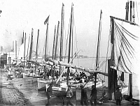 0065134 © Granger - Historical Picture ArchiveNEW ORLEANS: LEVEE, 1906.  Fishing fleet at the levee. Photograph, c1906.
