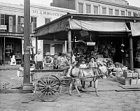 0131337 © Granger - Historical Picture ArchiveNEW ORLEANS: MARKET, c1905.   Boys riding in a mule-drawn cart on a corner of the French Market in New Orleans, Louisiana. Photographed c1905.