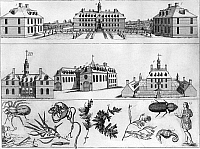0113298 © Granger - Historical Picture ArchiveVIRGINIA: WILLIAMSBURG.   Various buildings in Williamsburg, Virginia, including the College of William and Mary (top middle), the Capitol building (mid left), the Governor's palace (mid right), as well as various flora and fauna of the region. Line engraving, American, c1740.