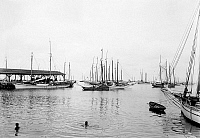 0131104 © Granger - Historical Picture ArchiveKEY WEST: HARBOR, c1895.   A fleet of boats owned by sponge divers in the harbor at Key West, Florida. Photograph, c1895.