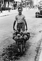 0132513 © Granger - Historical Picture ArchiveKEY WEST: COCONUTS, 1938.   Man with a wheelbarrow of coconuts. Photograph by Arthur Rothstein, 1938.