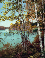 0621797 © Granger - Historical Picture ArchiveNEW YORK: ADIRONDACKS.   Inlet of Spitfire Lake in the Adirondack Mountains, New York. Photograph, c1903.