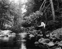 0621802 © Granger - Historical Picture ArchiveADIRONDACKS: FISHING, c1902.   A fisherman on a stream in the Adirondacks, New York. Photograph by William Henry Jackson, c1902.