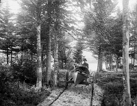 0621803 © Granger - Historical Picture ArchiveADIRONDACKS: CANOE, c1902.   Man pushing a canoe on a hand cart in the Adirondacks, New York. Photograph by William Henry Jackson, c1902.