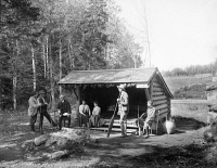 0621811 © Granger - Historical Picture ArchiveADIRONDACKS: CABIN, c1903.   A lean-to cabin in the Adirondacks, New York. Photograph, c1903.