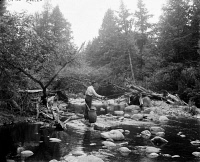 0621815 © Granger - Historical Picture ArchiveADIRONDACKS: FISHING, c1905.   A man fishing in a stream in the Adirondacks, New York. Photograph by William Henry Jackson, c1905.
