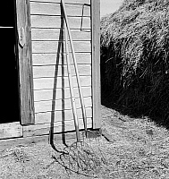 0123114 © Granger - Historical Picture ArchiveOREGON: FARM, 1939.   Hay forks leaning against a farm shed in Morrow County, Oregon. Photograph by Dorothea Lange, October 1939.