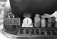 0121776 © Granger - Historical Picture ArchiveTEXAS: SEEDS, 1939.   Jars of seeds for sale on a luggage carrier of an automobile at a farmer's market in Weatherford, Texas. Photograph by Russell Lee, May 1939.