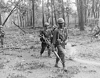 0017711 © Granger - Historical Picture ArchiveVIETNAM WAR: U.S. SOLDIERS.   Members of 'B' Company, First Battalion, 12th Infantry Division, on patrol during 'Operation Lincoln' in the Chu Pong Mountain Range near the Cambodian border, April 1966.