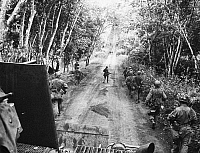 0056524 © Granger - Historical Picture ArchiveVIETNAM WAR: 1st CAVALRY.   Rubber trees provide shade   for the U.S. First Cavalry patrolling Phuoc Vinh near the Cambodian border in 1968.