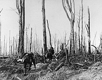 0183735 © Granger - Historical Picture ArchiveWORLD WAR I: ARGONNE, 1918.   U.S. Marines climbing a hill in the Meuse-Argonne forest in France during World War I, October 1918.