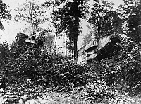 0183874 © Granger - Historical Picture ArchiveWORLD WAR I: TANKS.   Two tanks forcing their way through a forest in Europe during World War I.