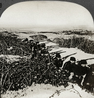 0324992 © Granger - Historical Picture ArchiveBELGIUM: TRENCHES, c1915.   'Trenches of the Allies among the dunes and brambles on the coast of Flanders.' Stereograph, c1915.