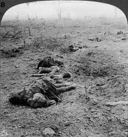 0325631 © Granger - Historical Picture ArchiveWORLD WAR I: SCOTTISH DEAD.   Scottish casualties after a battle at Flanders Field, Belgium. Stereograph, 1914-1918.
