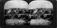 0325656 © Granger - Historical Picture ArchiveWORLD WAR I: FRENCH TRENCH.   Alert French soldiers in a trench in northern France, during World War I. Stereograph, 1914-1918.