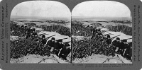 0326568 © Granger - Historical Picture ArchiveWWI: TRENCHES, c1916.   'Trenches of the Allies among the dunes and brambles on the coast of Flanders.' Stereograph, c1916.