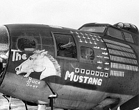 0067535 © Granger - Historical Picture ArchiveWORLD WAR II: AIRPLANE.   The 'scorecard' on the fuselage of the 'Mustang' shows that 17 Japanese airplanes were shot down.