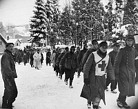 0099893 © Granger - Historical Picture ArchiveWORLD WAR II: PRISONERS.   German prisoners being marched to the rear by U.S. First Army forces at Bullange, Belgium, southeast of Malmedy. Photographed by Peter J. Carroll, January 1945.