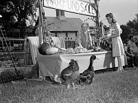 0419876 © Granger - Historical Picture ArchiveVICTORY STORE, 1942.   Mrs. Alice White selling donated produce to Lorraine Lavertu for the war fund in Hardwick, Vermont. Photograph by Albert Freeman, October 1942.