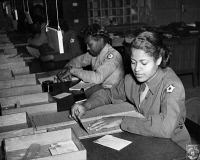 0528500 © Granger - Historical Picture ArchiveWWII: WOMEN'S ARMY CORPS.   Members of the United States Women's Army Corps identifying incorrectly addressed mail for soldiers at Camp Breckinridge in Kentucky. Photograph, 1943.