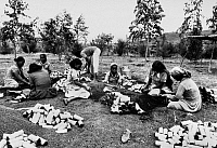 0114111 © Granger - Historical Picture ArchiveETHIOPIA: REFORESTATION.   Women pack dark soil and fertilizer in plastic bags for seedlings in a government reforestation program in Ethiopia, 1983.