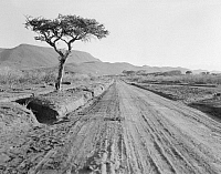 0124048 © Granger - Historical Picture ArchiveKENYA: HIGHWAY, 1936.   A muddy highway in the Rift Valley en route to Nairobi in Kenya. Photograph, 1936.