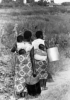 0125738 © Granger - Historical Picture ArchiveMALAWI: CARRYING CHILDREN.   Women from a village in Malawi, East Africa, carrying babies and vessels, probably to collect water, 1965.