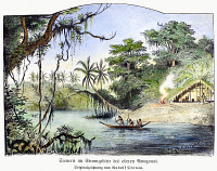 0100580 © Granger - Historical Picture ArchiveAMAZON JUNGLE, 1892.   A scene on the upper Amazon. Drawing, German, 1892.