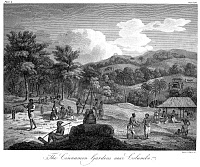 0077908 © Granger - Historical Picture ArchiveCEYLON: CINNAMON GARDENS.   'The Cinnamon Gardens near Colombo.' Copper engraving, English, 1804.