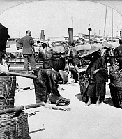 0116008 © Granger - Historical Picture ArchiveCHINA: HONG KONG, c1900.   A fish market on the dock of Hong Kong, China. Stereograph, c1900.