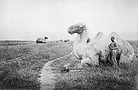 0121462 © Granger - Historical Picture ArchiveCHINA: MING TOMBS, c1870.   White limestone statue of a kneeling camel on the way to the mausoleum of Emperor Yung Lo (1402-1424), at the Ming Tombs near Peking, China. Photographed by John Thomson, c1870.