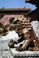 0121692 © Granger - Historical Picture ArchivePEKING: FOO DOGS.   Gilded bronze foo dogs, male (foreground) and female (rear), guarding an entrance at the imperial palace in the Forbidden City, Peking, China. Photographed c1970.