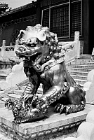 0121693 © Granger - Historical Picture ArchivePEKING: FOO DOG.   Gilded bronze female foo dog guarding an entrance at the imperial palace in the Forbidden City, Peking, China. Photographed c1970.