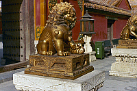 0121694 © Granger - Historical Picture ArchivePEKING: FOO LION.   Gilded bronze female foo lion guarding an entrance at the imperial palace in the Forbidden City, Peking, China. Photographed c1970.