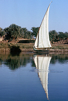 0129925 © Granger - Historical Picture ArchiveEGYPT: FELUCCA ON THE NILE.   A felucca moored along the banks of the Nile River in Egypt. Photographed c1974.