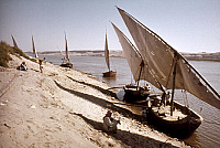 0131490 © Granger - Historical Picture ArchiveEGPYT: FELUCCAS.   Feluccas moored along the banks of the Nile River at Al Fashn, in the Beni Suef region in Egypt. Photographed by Eliot Elisofon, 1965.
