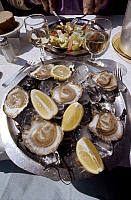 0044857 © Granger - Historical Picture ArchiveFRANCE: OYSTERS.   Oysters served at a restaurant on the Croisette at Cannes, France.