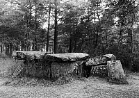 0165636 © Granger - Historical Picture ArchiveFRANCE: DOLMEN.   The remains of a dolmen, a type of megalithic tomb, in the Maine-et-Loire department of France, 4th-2nd millennium B.C. Photograph, 20th century.