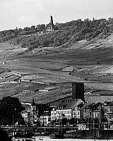 0093997 © Granger - Historical Picture ArchiveGERMANY: VINEYARDS, 1962.   View of vineyards beneath the Niederwald Monument in Rüdesheim, West Germany, 1962.