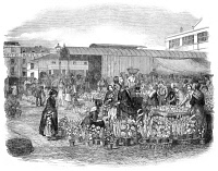 0015526 © Granger - Historical Picture ArchiveCOVENT GARDEN, 1848.   The flower market at Covent   Garden, London. Wood engraving, English, 1848.