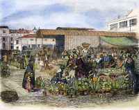 0084580 © Granger - Historical Picture ArchiveCOVENT GARDEN, 1848.   The flower market at Covent Garden, London, England. Wood engraving, English, 1848.