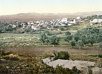 0130771 © Granger - Historical Picture ArchiveHOLY LAND: JENIN, c1895.   View of the city of Jenin, West Bank. Photochrome, c1895.