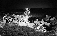 0131035 © Granger - Historical Picture ArchiveHOLY LAND: SHEPHERDS.   Shepherds watching their flock at night, with the city of Bethlehem in the distance. Photograph, c1928.