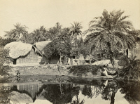 0350767 © Granger - Historical Picture ArchiveINDIA: CALCUTTA.   Native huts and palm trees in Calcutta, India. Photograph by Francis Frith, c1865.