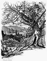 0030932 © Granger - Historical Picture ArchiveITALY: FLORENCE, c1875.   View from Bellosguardo, a hill outside Florence, Italy. Wood engraving, c1875, after Harry Fenn.