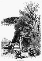 0078256 © Granger - Historical Picture ArchiveITALY: FLORENCE, c1875.   Scene in the Cascine Park, Florence, Italy. Wood engraving, c1875, after Harry Fenn.