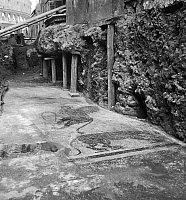 0124111 © Granger - Historical Picture ArchiveROME: LUDUS MAGNUS.   Mosaic floor at the Ludus Magnus gladiator arena in Rome, Italy. Photographed during excavations in 1957.