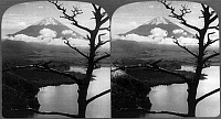 0111482 © Granger - Historical Picture ArchiveJAPAN: MOUNT FUJI.   The sacred mountain, Mount Fuji, is seen from the shores of Lake Motosu, Japan. Mount Fuji is also an active volcano. Stereograph, c1904.