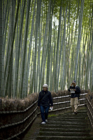0622703 © Granger - Historical Picture ArchiveJAPAN: ARASHIYAMA, 2013.   Visitors walk on a path through a bamboo forest in Arashiyama, Kyoto, Japan. Photograph, 31 March 2013. Full Credit: ullstein bild - Boness/IPON / Granger, NYC. All Rights Reserved.